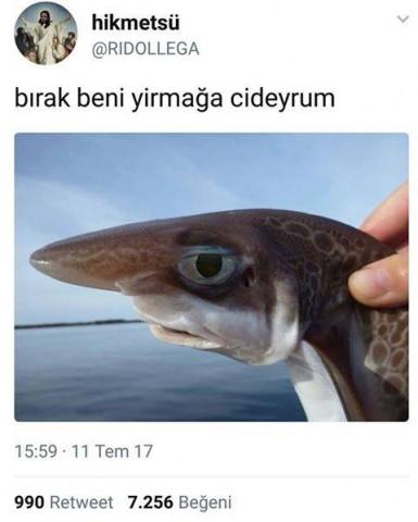 yirmak